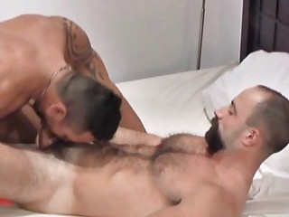 hawt beared older homo guy gets roughly fucked