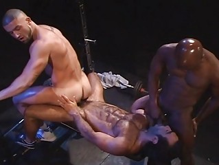lustful homosexuals having group sex in the gym