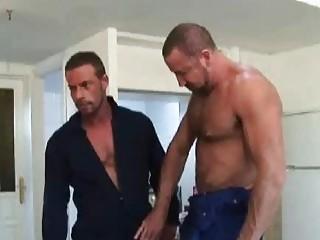 aged homo fellows having excellent sex