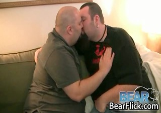 chubby homo bears engulf off three-some steam