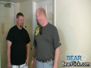 gay bears drilling chunky butt hardcore part3