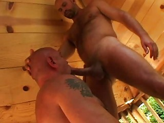 strong gay bear gives oral sex to his mature
